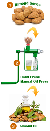 easy steps for how to make almond oil at home