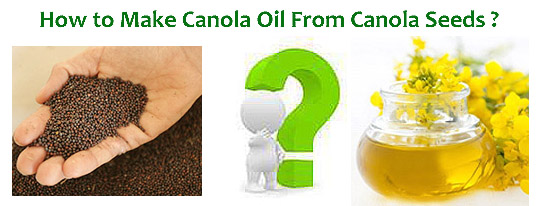 how to make canola oil